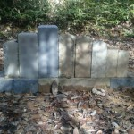 神石郡神石高原町にて、お墓の整理をしました!!